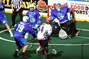 NLL box lacrosse game